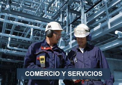 COMERCIO Y SERVICIOS